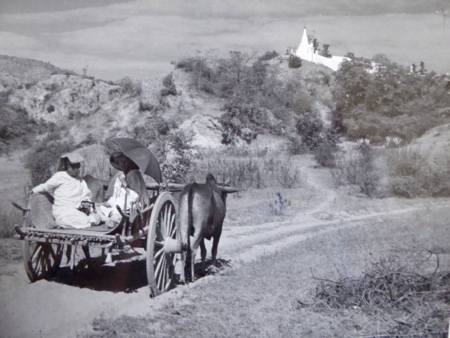 Marie and Sarana travelling by bullock wagon to Sagain Hills (1957).